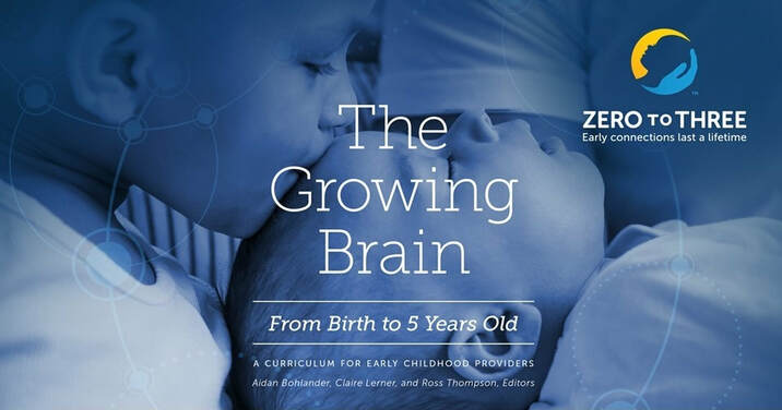 Attachment parenting brain development